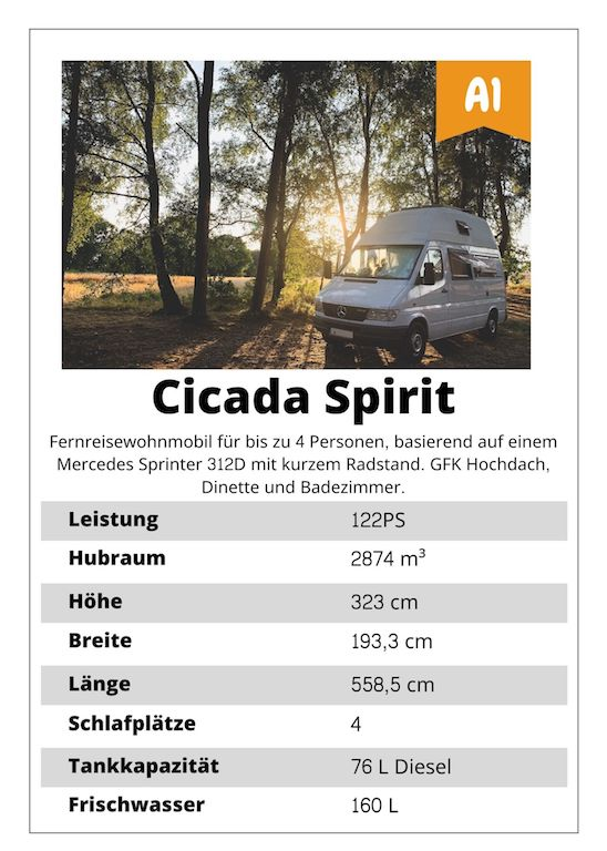 Mercedes Sprinter Cicada SPirit
