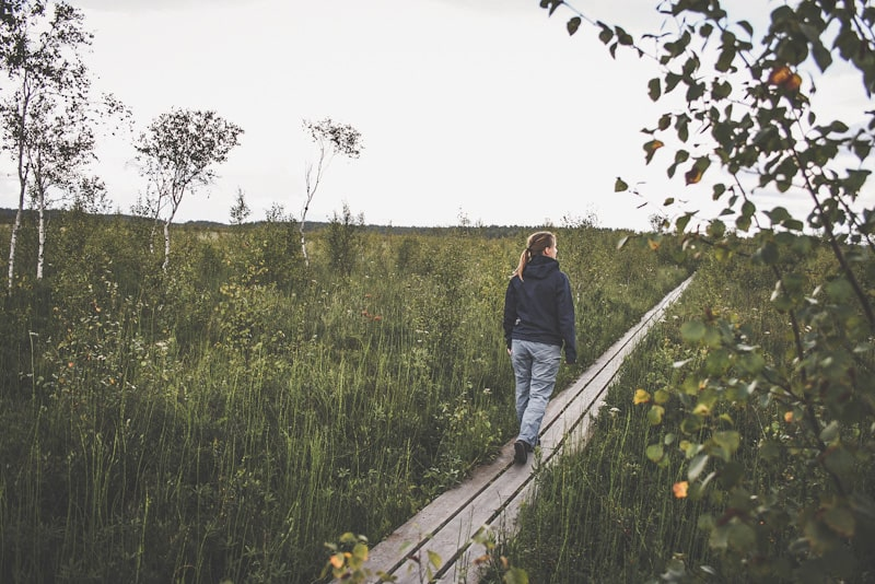 Rundwanderwege in Schweden Store Mosse Nationalpark Kävsjön runt