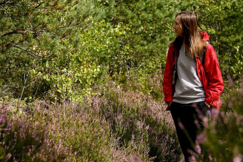 Tyresta Nationalpark Rundreise mit dem Wohnmobil durch Schweden